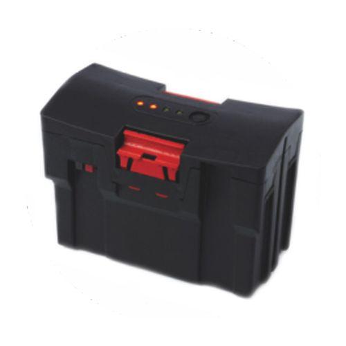 Bateria-Ion-Litio